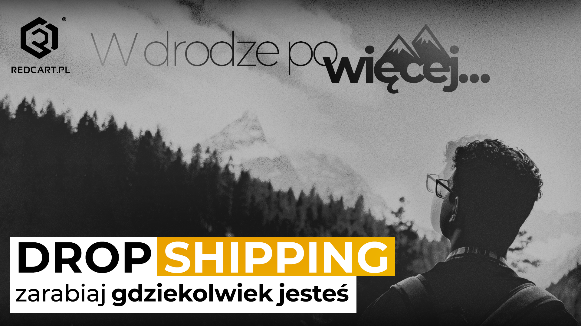 dropshipping sklep internetowy redcart