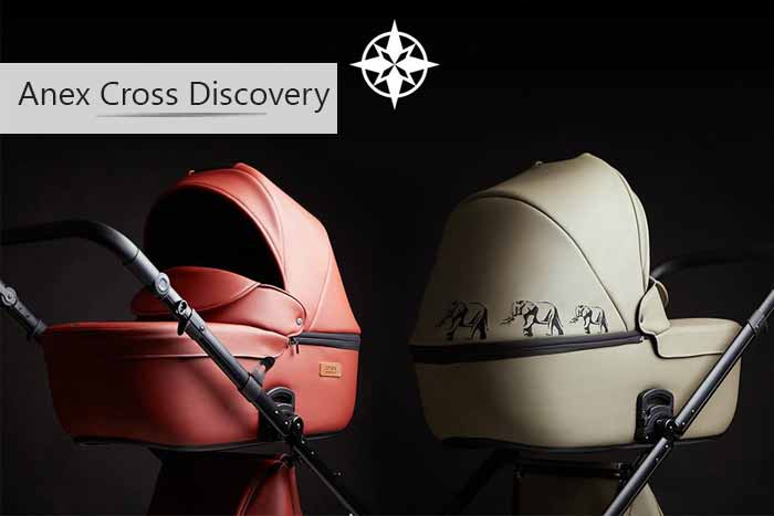 Anex CROSS DISCOVERY