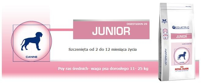 Royal_Junior_Pediatric_1