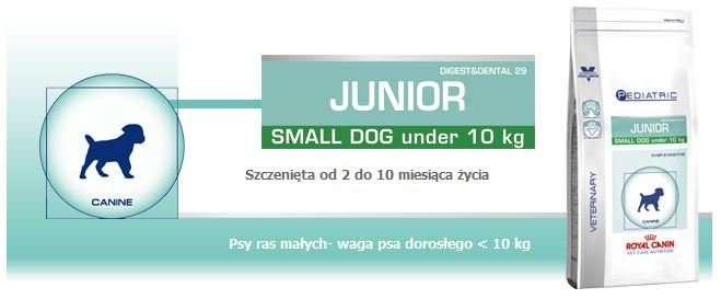 Royal_Junior_Small_Dog_Pediatric_1