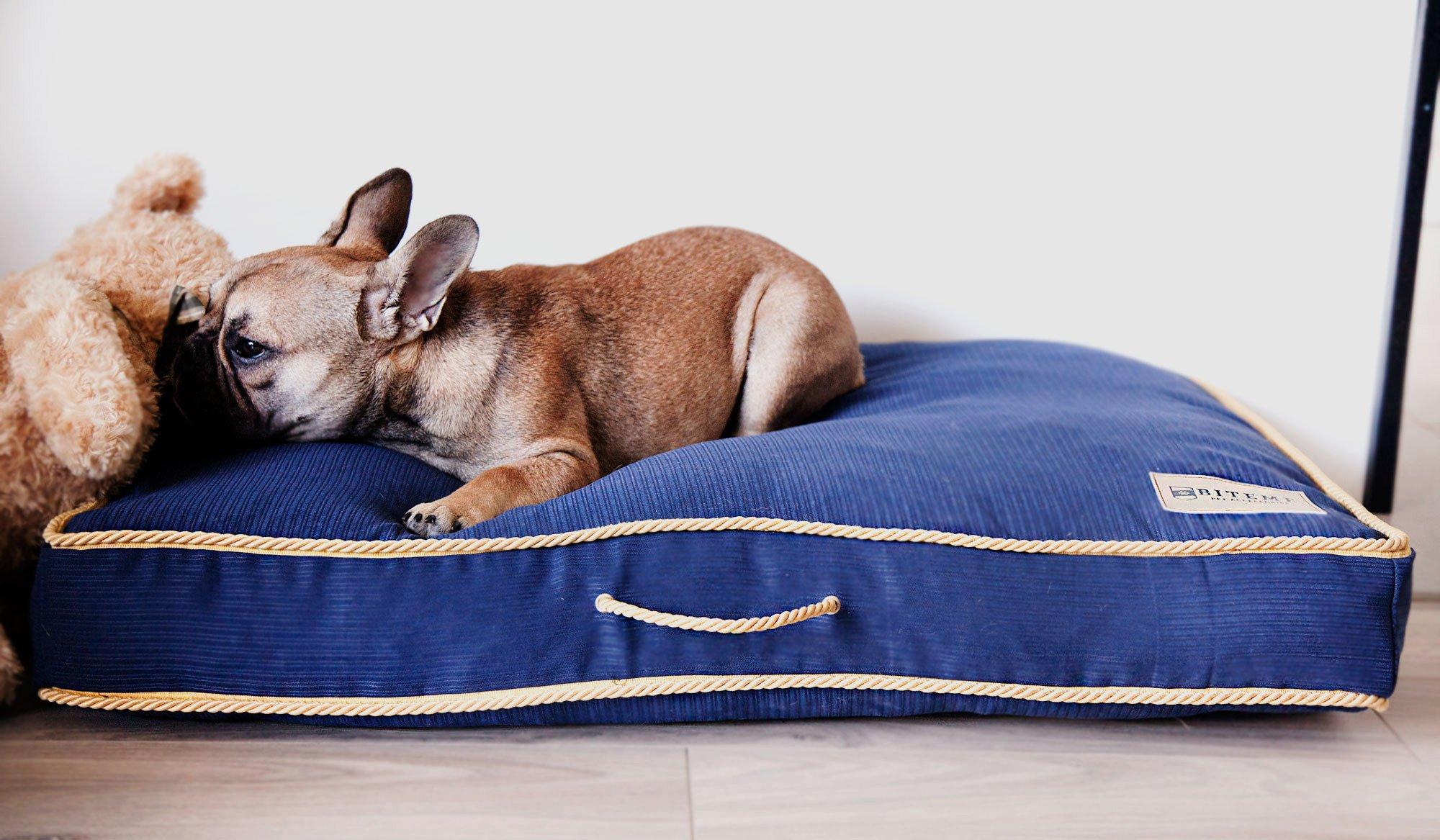 Stylowa leżanka dla psa Gold Bluebell o klasycznym designie