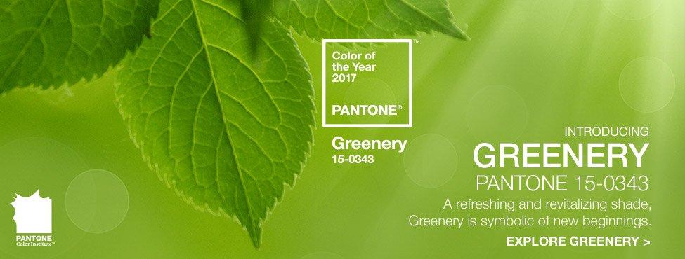 Zieleń to kolor roku Pantone 2017