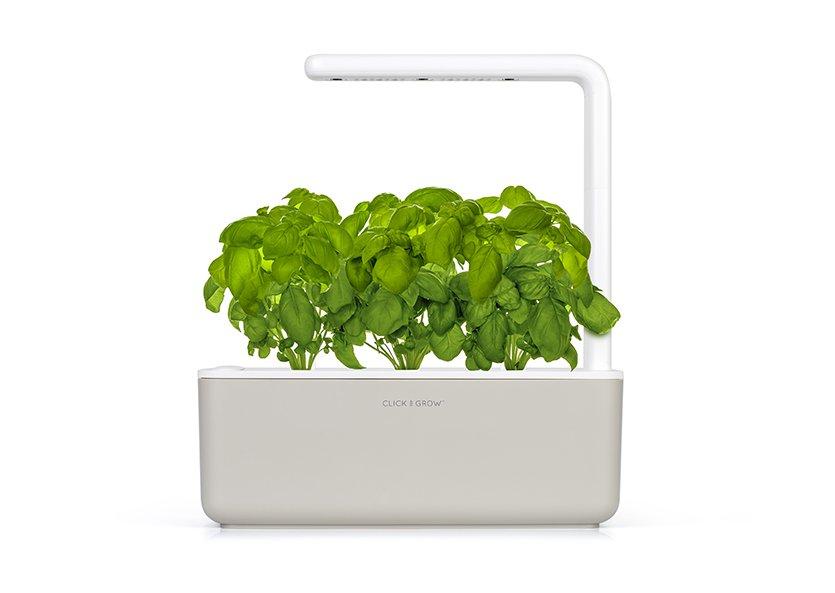 Doniczki Click And Grow To Sposób Na Najświeższe Warzywa I Zioła