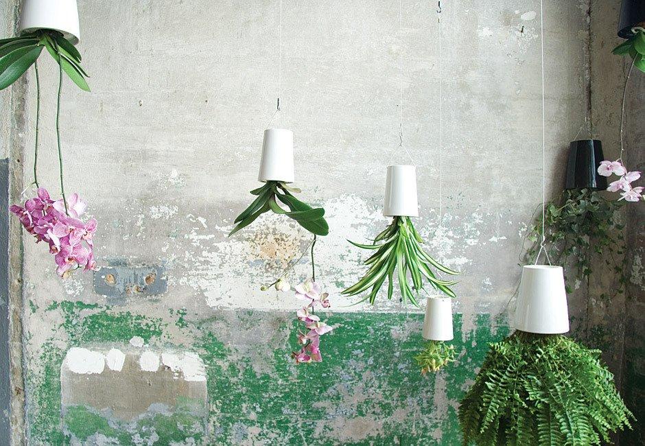 Zazielenić wnętrza można także przy pomocy roślin, najlepiej w różnych odcieniach zieleni