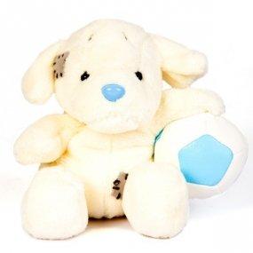 Niebieski Nosek Labrador
