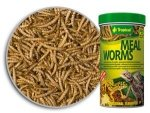 Tropical Meal Worms 250ml/35g