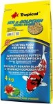 Tropical Koi&Goldfish Basic Sticks 4kg