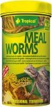 Tropical Meal Worms 100ml/13g
