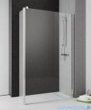Radaway Eos II Walk-in kabina prysznicowa 100 prawa szkło przejrzyste 3799502-01R