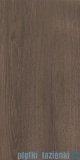 Paradyż Domus brown płytka ścienna 30x60