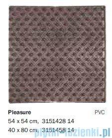 Sealskin Mata antypoślizgowa Pleasure wannowa grey 40x80cm 315145814