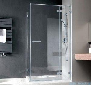 Radaway Euphoria KDJ Drzwi prysznicowe 120 prawe szkło przejrzyste 383042-01R