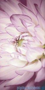 Paradyż Sorenta kwiaty B inserto ścienne 30x60
