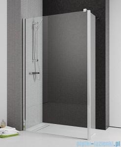 Radaway Eos II Walk-in kabina prysznicowa 100 lewa szkło przejrzyste 3799502-01L