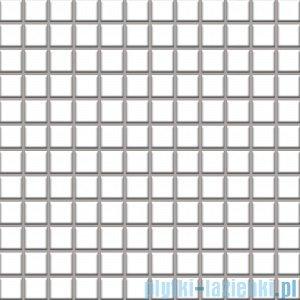 Paradyż Altea bianco mozaika k2x2 29,8x29,8