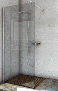 Sea Horse Easy In ścianka prysznicowa typu Walk In 100cm Grafitowe BK251G10