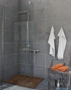 Sea Horse Easy In ścianka prysznicowa typu Walk In 100cm przejrzyste BK251T10