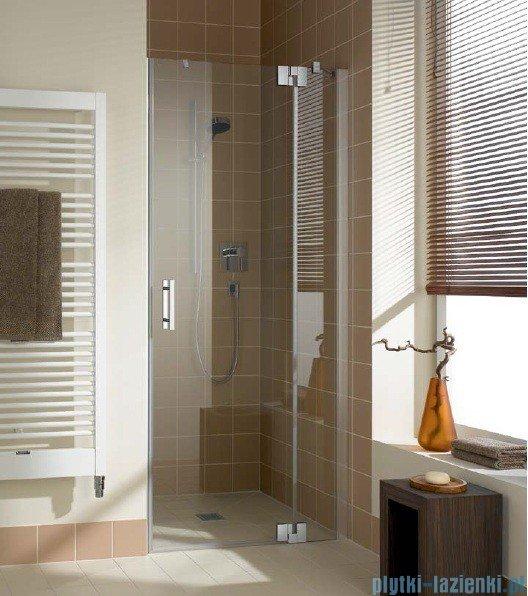 Kermi Filia Xp Drzwi wahadłowe z polem stałym, prawe, szkło przezroczyste, profile srebrne 90x200cm FX1TR09020VAK