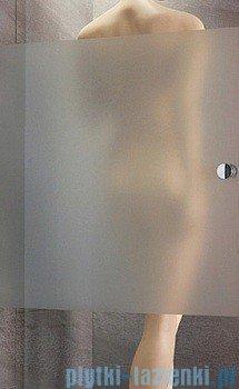 Radaway Almatea DWJ Gold drzwi wnękowe 80 lewe szkło intimato 30802-09-12N