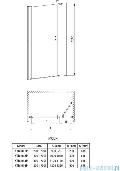 Deante Moon drzwi wnękowe uchylne  110 cm KTM 013P