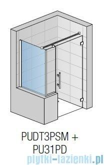 SanSwiss Pur PUDT3P Ścianka boczna wymiary specjalne 30-100/do 200cm Durlux 200 PUDT3PSM21022