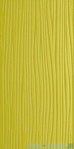 Paradyż Vivida verde struktura płytka ścienna 30x60