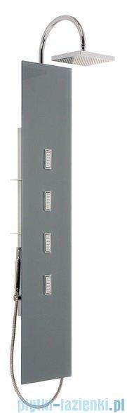 Sanplast Space Line panel prysznicowy PP/SPACE-150 31x150 cm srebrny 631-100-0030-37-000