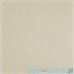 Paradyż Duroteq beige poler płytka podłogowa 59,8x59,8