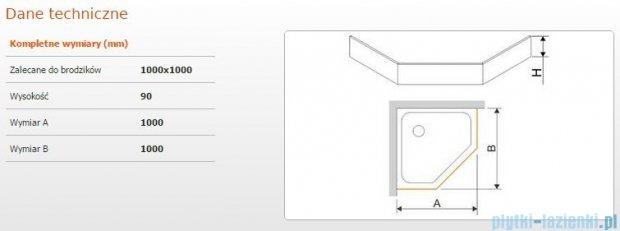 Sanplast Obudowa brodzika OBPK 100x100x9 cm 625-400-0840-01-000