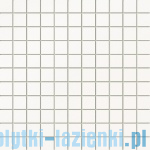 Mozaika ścienna Tubądzin Colour White 30x30