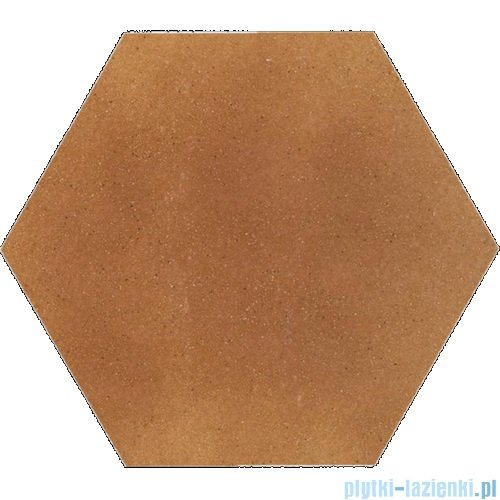 Paradyż Aquarius brown klinkier heksagon 26x26