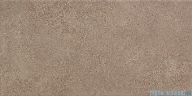 Tubądzin Zirconium beige płytka ścienna 22,3x44,8