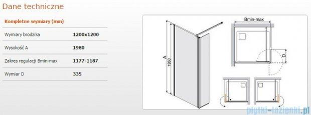 Sanplast kabina Walk-In z elementem ruchomym PR2/PRIII 120x198 cm przejrzyste 600-073-1000-38-401