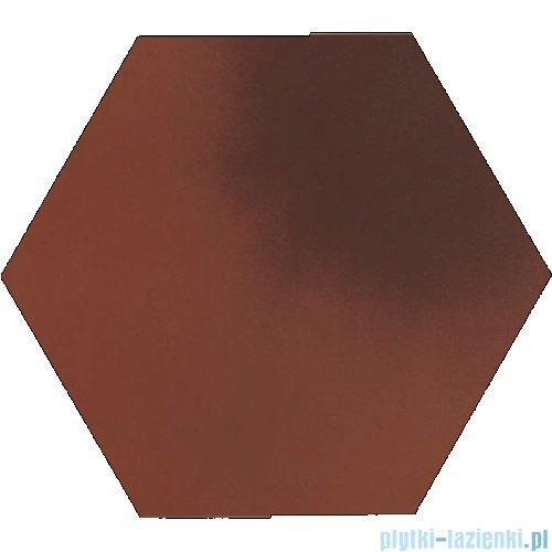 Paradyż Cloud rosa klinkier heksagon 26x26