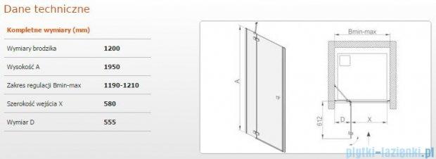 Sanplast drzwi skrzydłowe DJ2/FREE-120 120x195 cm przejrzyste 600-260-0360-42-401