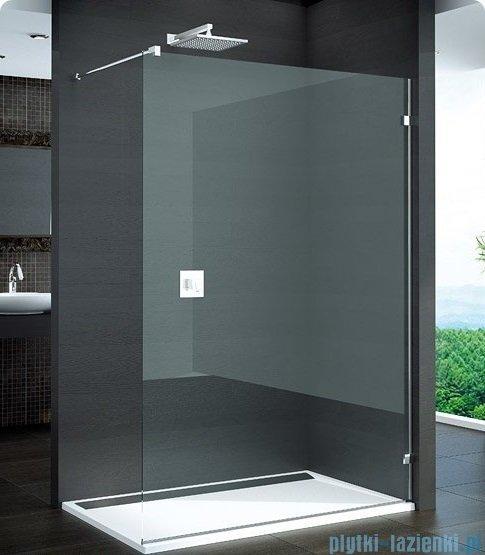 SanSwiss Pur PDT4 Ścianka wolnostojąca 100-160cm profil chrom szkło Durlux 200 Prawa PDT4DSM31022