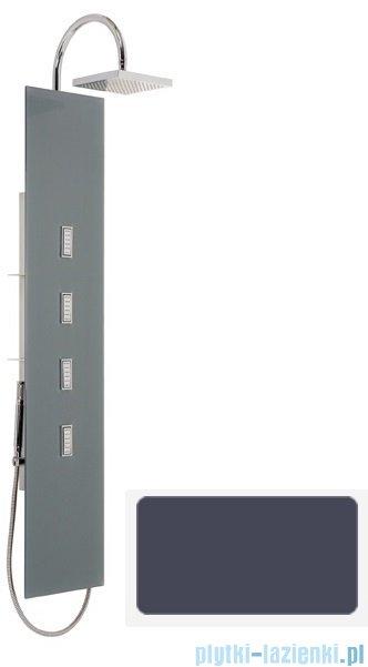 Sanplast Space Line panel prysznicowy PP/SPACE-150 31x150 cm szary 631-100-0030-51-000
