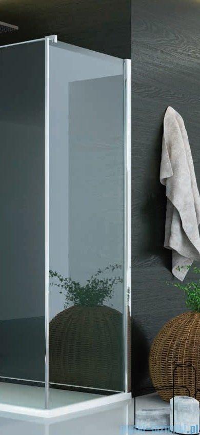 SanSwiss Pur PUDT3P Ścianka boczna wymiary specjalne 30-100/do 200cm cieniowane czarne PUDT3PSM21055
