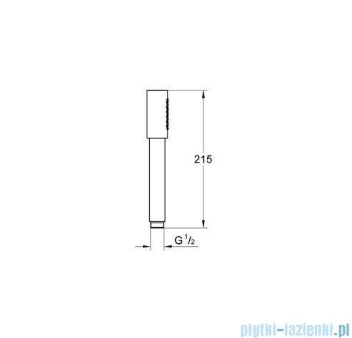 Grohe Quadra Prysznic ręczny DN15 chrom 28034000