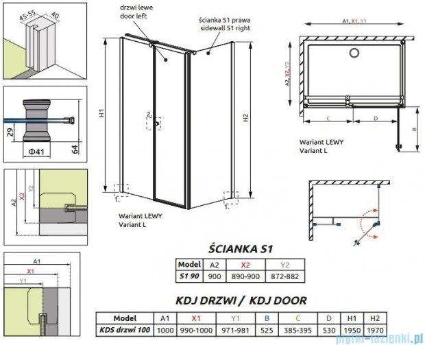 Radaway Eos II KDS kabina prysznicowa 100x90 lewa szkło przejrzyste + brodzik Argos D + syfon 3799482-01L/3799411-01R/4AD910-01