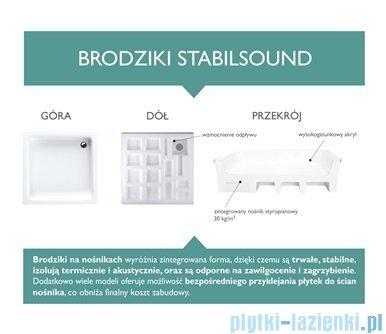 Schedpol Competia Brodzik prostokątny z nośnikiem 100x90x14cm 3.0168