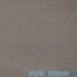 Paradyż Duroteq brown poler płytka podłogowa 59,8x59,8