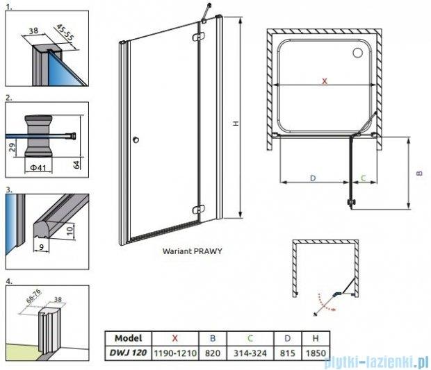 Radaway Torrenta DWJ drzwi wnękowe 120 prawe szkło carre 32030-01-10N