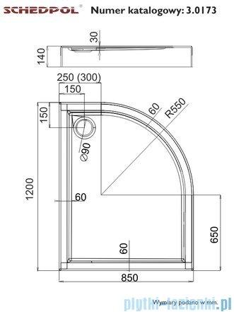 Schedpol Competia Brodzik asymetryczny lewy z nośnikiem 85x120x14cm 3.0173
