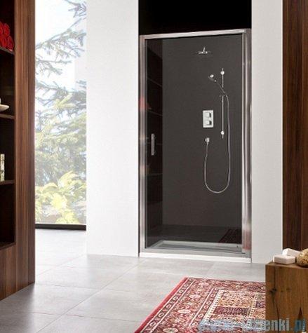 Roca Town Drzwi do wnęki prysznicowej 1częściowe 100 100x195,5cm szkło przezroczyste AMP171001M
