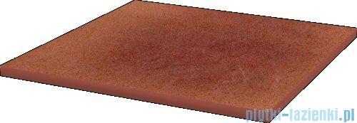 Paradyż Taurus rosa klinkier płytka bazowa 30x30
