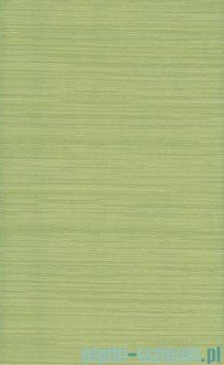 Paradyż Carioca verde płytka ścienna 25x40