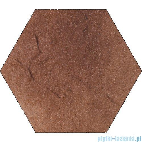 Paradyż Taurus brown klinkier heksagon 26x26