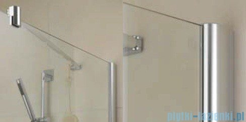 Kermi Diga Ściana boczna, szkło przezroczyste, profile srebrne 110x200cm DITWD11020VAK