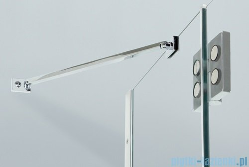 Sanplast drzwi skrzydłowe DJ2L(P)/AVIV-110 110x200 cm lewa przejrzyste 600-084-0680-42-401